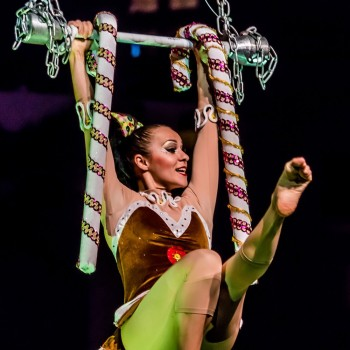 Эстрадно-цирковые шоу
